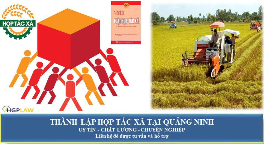 Thành lập hợp tác xã tại Quảng Ninh